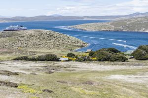 Westpoint Island, Falkland